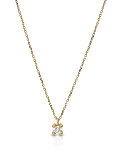 Comete Gold Easy Basic GDPLG05Y